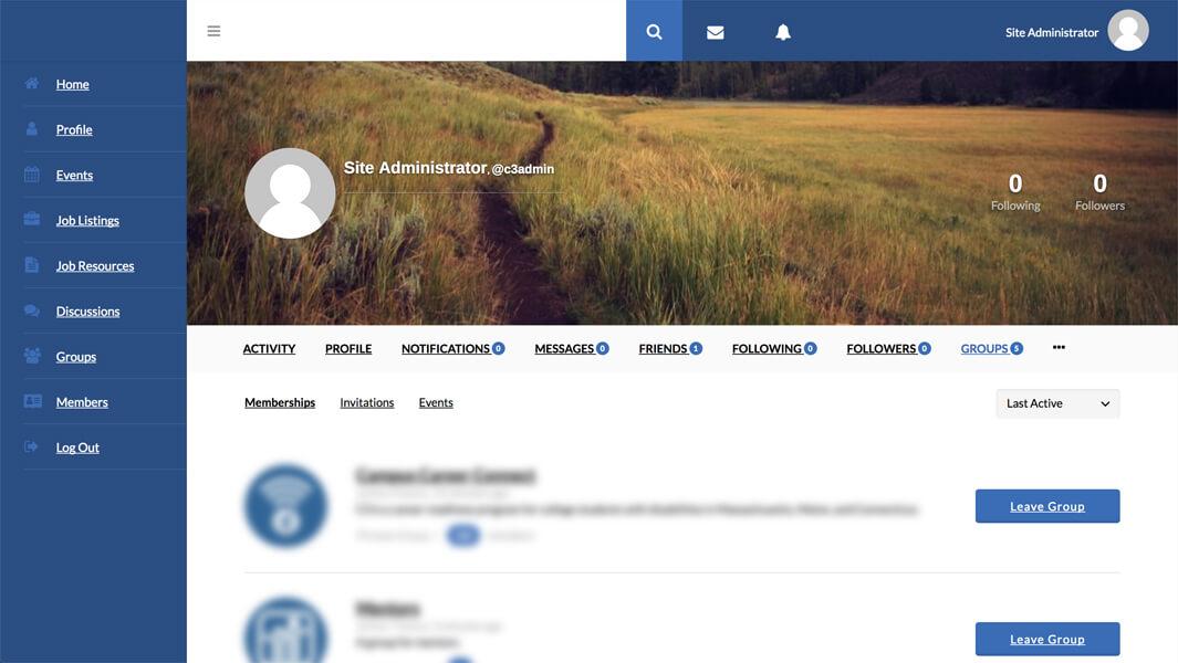 eMentoring Platform Preview #2
