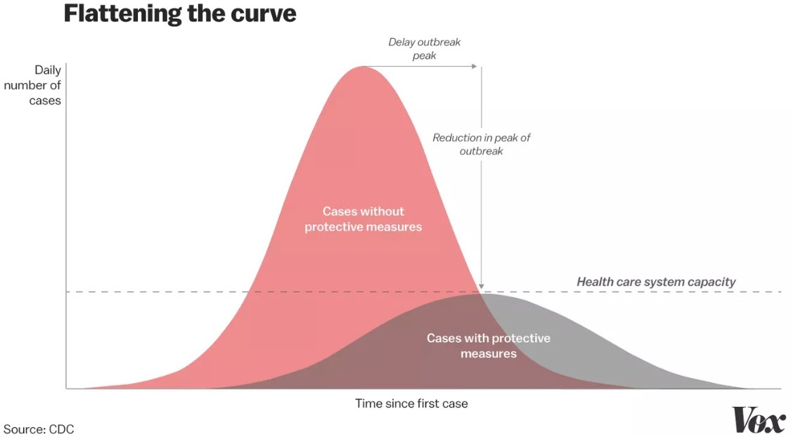 Chart from Vox that shows how the number of COVID-19 cases decreases with the implementation of protective measures.